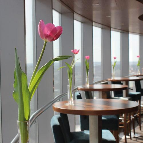 Café 22 - kawiarnia na 22 piętrze