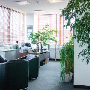 Komfortowe biura do wynajęcia w centrum Szczecina